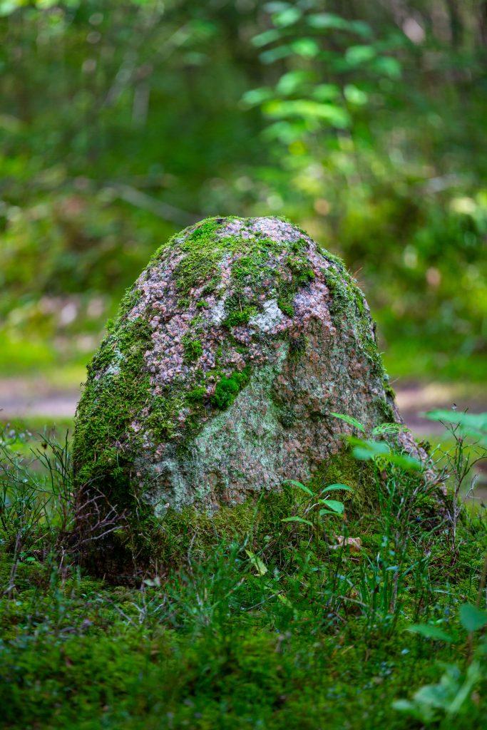 Mitologinis Mikniūnų akmuo